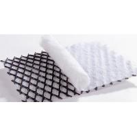 China HDPE Material Geocomposite Drainage Net System For Pavement Reinforcement wholesale