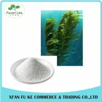 China 100% Natural Algae Oil DHA Extract Powder 7%/10% CWS on sale