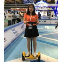 China Mini Standing Self Balance Segway Electric Scooter 10 inch Tire With Handle Bar wholesale
