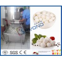 China EC 10TPD Soft Cheese Making Equipment For Cheese Making Factory / Cheese Making Plant wholesale