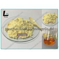 CAS 23454-33-3 Tren Anabolic Steroid Trenbolone Hexahydrobenzylcarbonate