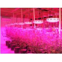 China Red/Blue mercury,IR and UV led grow lamp,90w Indoor LED Grow Light(CE&ROHS) wholesale