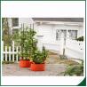 China 感じられた耐候性がある植物は家/庭のための袋を育てます12X24が袋のフェルト材料を育てる植物のための袋を育てます wholesale