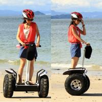 China 19 Inch Self Balancing Electric Scooter wholesale