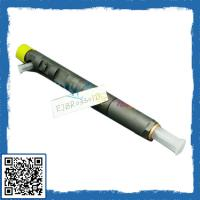 China DelPhi car engine diesel injector EJBRO 3301D, Engine Oil Injector unit EJBR0 3301D, commo wholesale