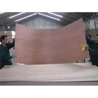 China Commercial plywood 5 wholesale