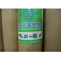 """China Galvanized Welded Wire Mesh With 1/4"""" 1/2"""" 3/4"""" 1"""" 2"""" 5/8"""" 3/8"""" Hole wholesale"""
