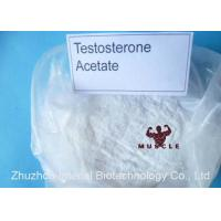 China Strongest Testosterone Steroid Testosterone Acetate / Test Ace For Fat Growth Safe Delivery wholesale