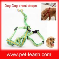 China Green dog polyester cord The dog leash Chest and back and pulling on the rope QT-0073 on sale