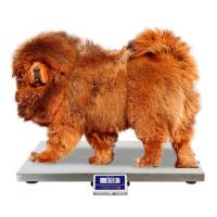 China 75 100 200 Kg Dog Weight Scale / Pet Weighing Scales With Anti - Slip Mat wholesale