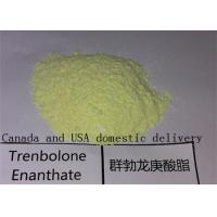 China Trenbolone Enanthate Raw Powders Anabolic Bulking Cycle Steroids for Muscle Growth wholesale