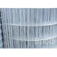 China In Roll Galvanized Welded Wire Screen Fabric 30m Length For Building wholesale