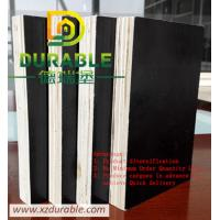 China 12mm shuttering construction concrete formwork plywood / phenolic black film faced Plywood wholesale