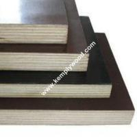 Film faced plywood sheets, construction formwork plywood, marine water proof film faced plywood