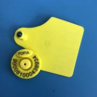 China TPU Livestock Rfid Ear Tags For Cattle Animal Management , ICAR Certificate wholesale