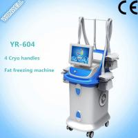 China Fat Freezing Multi-functional Slimming Machine with 4 handles for salon wholesale