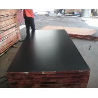 1220*2440, 1250*2500mm, 1500*3000mm MARINE PLYWOOD & construction film faced shuttering plywood