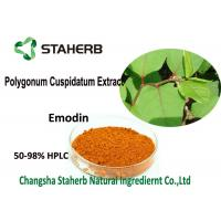 China 98% Emodin Powder Pure Natural Plant Extracts , Polygonum Cuspidatum Root Extract wholesale