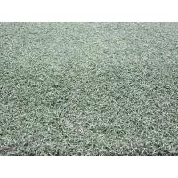 Buy cheap OEM 9000Dtex Green Tennis Artificial Fake Turf Grass w/ Yarn Height 15mm from wholesalers