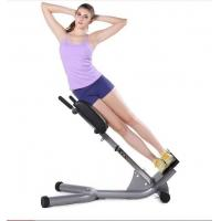 China Portable Power Exercise Equipment High Density Sponge Lower Back Extension Bench  wholesale