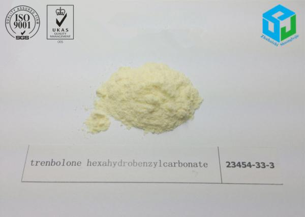 cyp 300 steroid