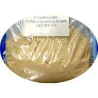 Turinabol Raw Steroid Powders Clostebol Acetate / 4-Chlorotestosterone Acetate