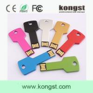 China Kongst custom usb/mini usb flash drive/metal key usb wholesale