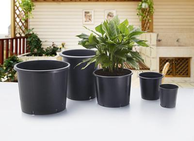 pots for plants images