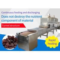 China High Efficiency Food Sterilization Equipment Continuous Raisin Belt Silvery White Color on sale