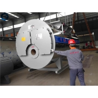 China High Efficiency Industrial Diesel Fired Steam Boiler For Mushroom Cultivation wholesale