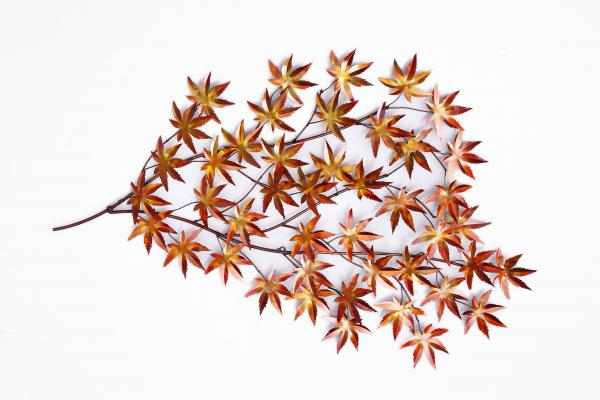 Metal Leaves Wall Decor Images
