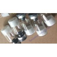 Ipamorelin Acetate Peptide Human Growth Factor 170851-70-4 Penta Peptide Hormone