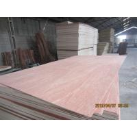China plywood/commercial plywood wholesale