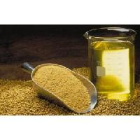China Refined Soybean Oil on sale
