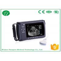 Linear / Convex Probe Vet Ultrasound Diagnostic Equipment For Ovine , Bovine , Equine