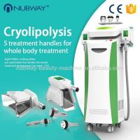 China 5 handles cryoliplysis , cavitaiton and RF body slimming, cool sculpting weight loss machine wholesale