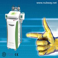China Vertical amazing result best cryolipolysis lipo laser cavitation to losing weight wholesale