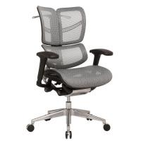 China China supplier New Product Durable Swivel Mesh Office Chair , Adjustable New Design Back Executive Ergonomic Chair wholesale