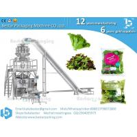 China Leafy  greens baby leaf salad packing machine wholesale