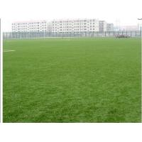 China Bicolor Field Football Artificial Grass Soccer 50mm , Yarn Count 9800Dtex wholesale