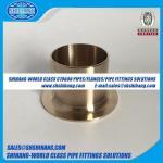 copper nickel UNS C70600 CUNI 9010 flange Stub End-ASME B16.9