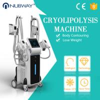 China Hot sale CE approved weight loss newest cool tech fat freezing slimming machine four cryo handles ! wholesale