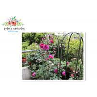 China Nursery House Garden Stake Solid Frame Flower Support Ushape Pipe wholesale