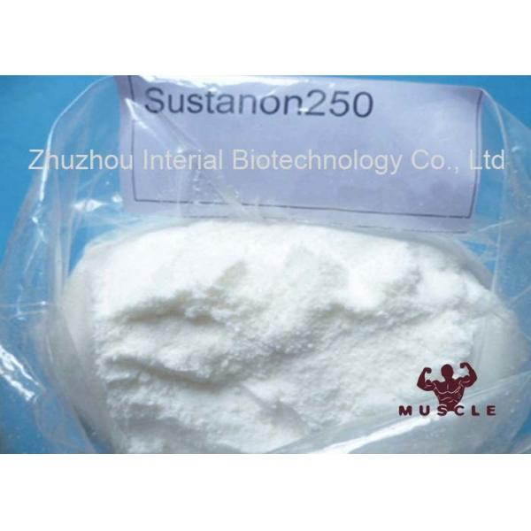Quality Sustanon 250 Testosterone Blend Strongest Injectable Steroid For Bodybuilding for sale