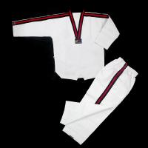 China Martial arts stripped taekwondo master uniform White Martial Arts Kungfu Taekwondo Uniforms Custom on sale