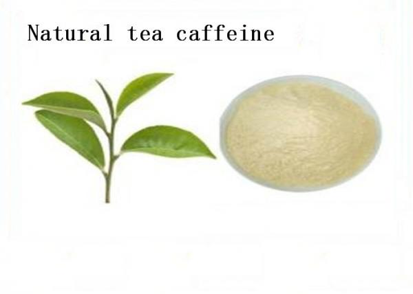 Quality Food Grade Natural Plant Extracts Caffeine Tea 58 08 2 For Digestion Weight Loss for sale