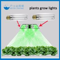 China High pressure sodium/1000w HPS grow light lamp/bulb wholesale