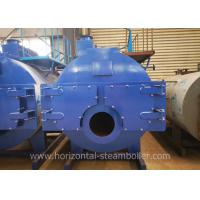 China Natural Gas Steam Boiler Fruits Dehydration Line Automatic Running on sale
