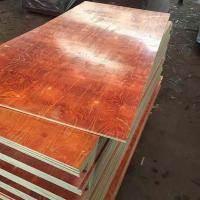 China Waterproof Melamine Glue Red laminated Film faced plywood 2 time hot press on sale