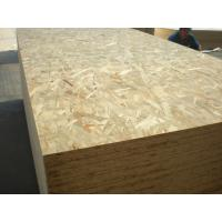 China OSB  oriented strand board wholesale